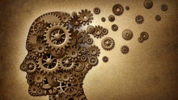 Cervello con rotelle.